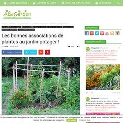 Les bonnes associations de plantes au jardin potager