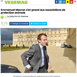 Emmanuel Macron s'en prend aux associations de protection animale – Vegemag