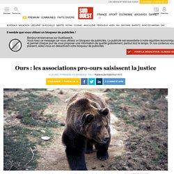 Ours: les associations pro-ours saisissent la justice