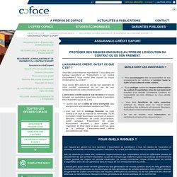L'assurance-crédit export en cas de non-paiement de vos contrats