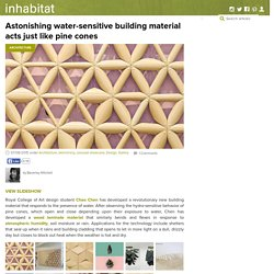 Astonishing water-sensitive building material by Chao Chen acts just like pine cones