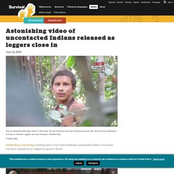 Astonishing video of uncontacted Indians released as loggers close in - Survival International