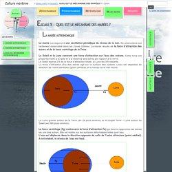 La marée astronomique - La marée barométrique - Culture Maritime