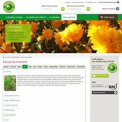 Copinages de jardin - Roland Motte... Jardinier !