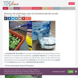 Astuces de jardinage avec du bicarbonate de soude