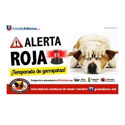Reciben atención más de mil alumnos de educación especial - Ensenada