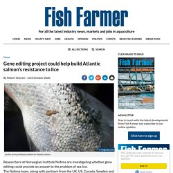 FISH FARMER 23/10/20 Gene editing project could help build Atlantic salmon's resistance to lice