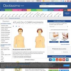 Atlas du corps humain