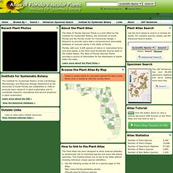 ISB: Atlas of Florida Vascular Plants