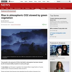 Rise in atmospheric CO2 slowed by green vegetation
