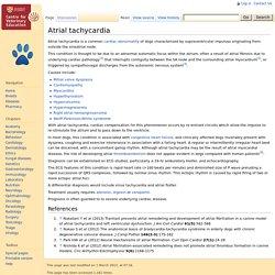 Atrial tachycardia - Dog