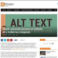 Añadir el atributo Alt a todas tus imágenes en WordPress