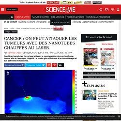 Cancer : on peut attaquer les tumeurs avec des nanotubes chauffés au laser - Science-et-vie.com