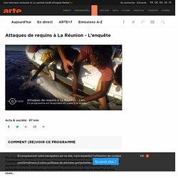 Attaques de requins à La Réunion - L'enquête