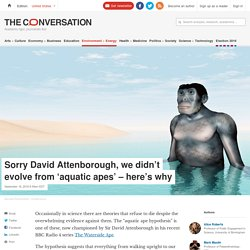 Refuting aquatic ape hypothesis