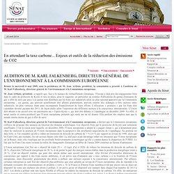 SENAT 06/05/09 En attendant la taxe carbone... Enjeux et outils de la réduction des émissions de CO2