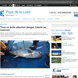 Thon en boite attention danger, l'alerte au mercure - France 3 Pays de la Loire