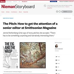 The Pitch: How to get the attention of a senior editor at Smithsonian Magazine
