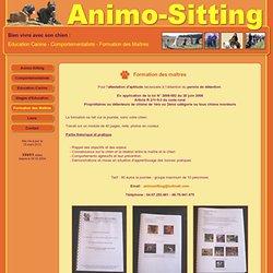 Attestation d'aptitude - Formation des maitres Montpellier Mauguio 34