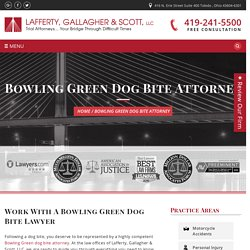 Dog Bite Attorney Bowling Green