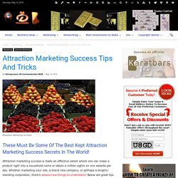 Attraction Marketing Success Tips And Tricks