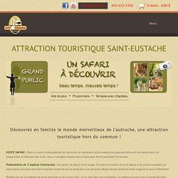 Attraction touristique Saint-Eustache - Ferme d'autruche