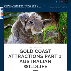 Gold Coast Attractions Part 1 - Australian Wildlife
