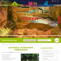 Activités & attractions touristiques
