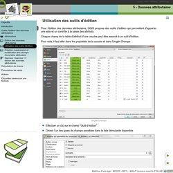 5 - Données attributaires - Utilisation des outils d'édition