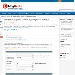 Les attributs magento : l'attribut, le jeu et groupes d'attributs