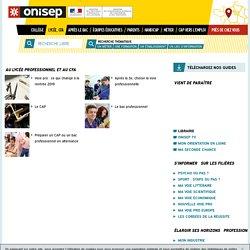 ONISEP : Au lycée professionnel et au CFA