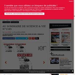 Au sommaire de Science & Vie n°1185 - Science-et-vie.com
