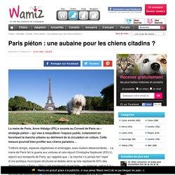 Paris piéton : une aubaine pour les chiens citadins ? - Société - Wamiz