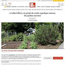 A Aubervilliers, un projet de centre aquatique menace des jardins ouvriers