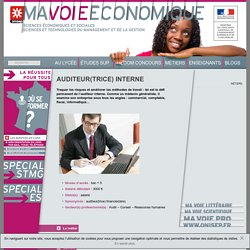 auditeur(trice) interne