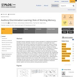 Auditory Discrimination Learning: Role of Working Memory