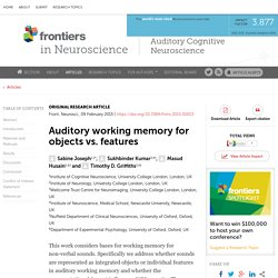 Auditory working memory for objects vs. features