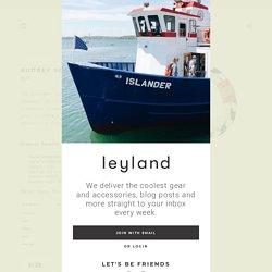 Audrey Scallop – Leyland