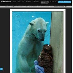 Natur, Tier und Mensch, Tiere Bilder auf fotocommunity