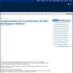 Augmentation de la production de thés biologiques indiens