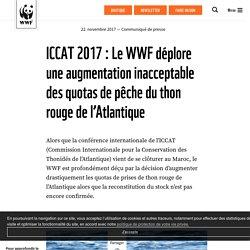 ICCAT 2017 : Le WWF déplore une augmentation inacceptable des quotas de pêche du thon rouge de l'Atlantique