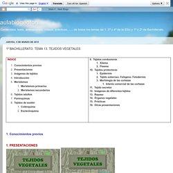 aulabiogeotoni: 1º BACHILLERATO. TEMA 13. TEJIDOS VEGETALES