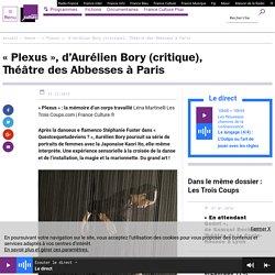 """Plexus"" d'AurélienBory"