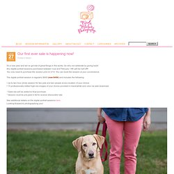Nicole Mlakar Photography Blog » Austin, Texas: On-Location, natural light photographer. Photographing pets and their people.