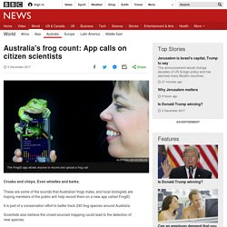 Australia's frog count: App calls on citizen scientists