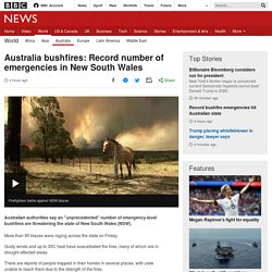 Australia bushfires: Record number of emergencies in New South Wales - BBC News