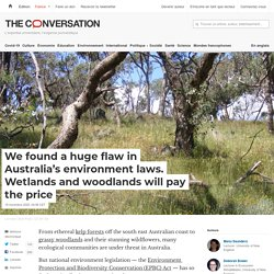 We found a huge flaw in Australia's environment laws. Wetlands and woodlands will pay the price