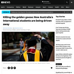 Killing the golden goose: How Australia's international students are being driven away - ABC News