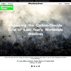 Fires in Australia and the Amazon Released Billions of Tons of CO2 in 2019