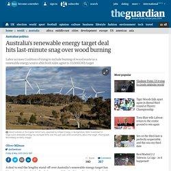 Australia's renewable energy target deal hits last-minute snag over wood burning